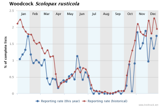 BirdTrack is coordinated by the BTO, in partnership with RSPB, BirdWatch Ireland, the Scottish Ornithologists' Club and the Welsh Ornithological Society. These lists provide fascinating information about the timing of migration, annual breeding patterns and species' abundance. See www.birdtrack.net to learn more.