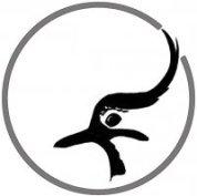 ringing_logo_1.jpg