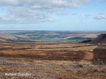 RC burnt moorland