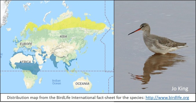 blog birdlife map