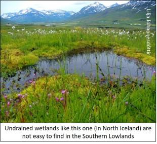blog nice wetland