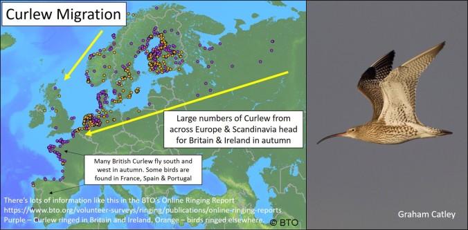 blog migration map