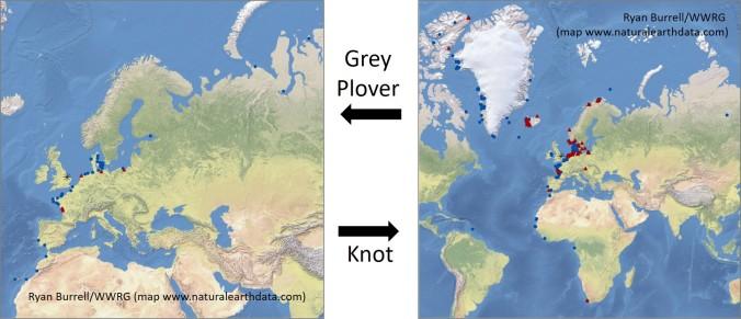 wwrg map GV KN
