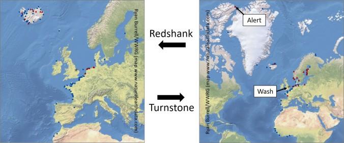 wwrg map RK TT