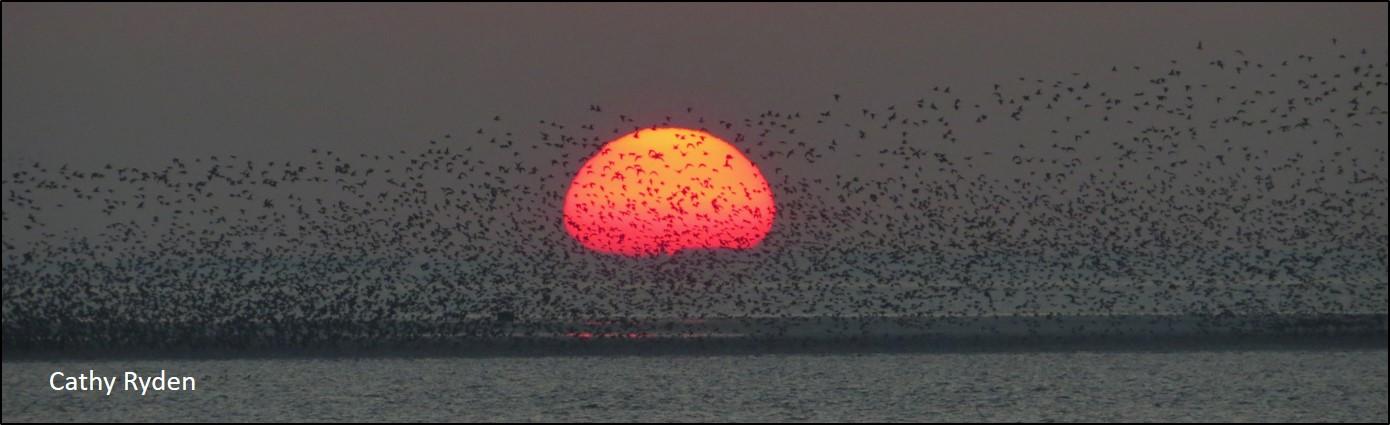 wwrg sunset