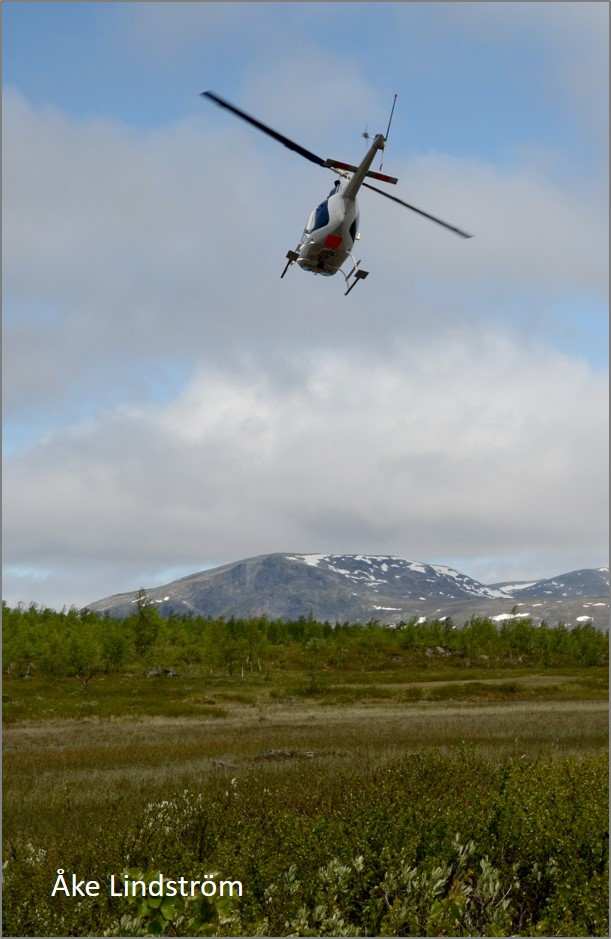 blog helicopter