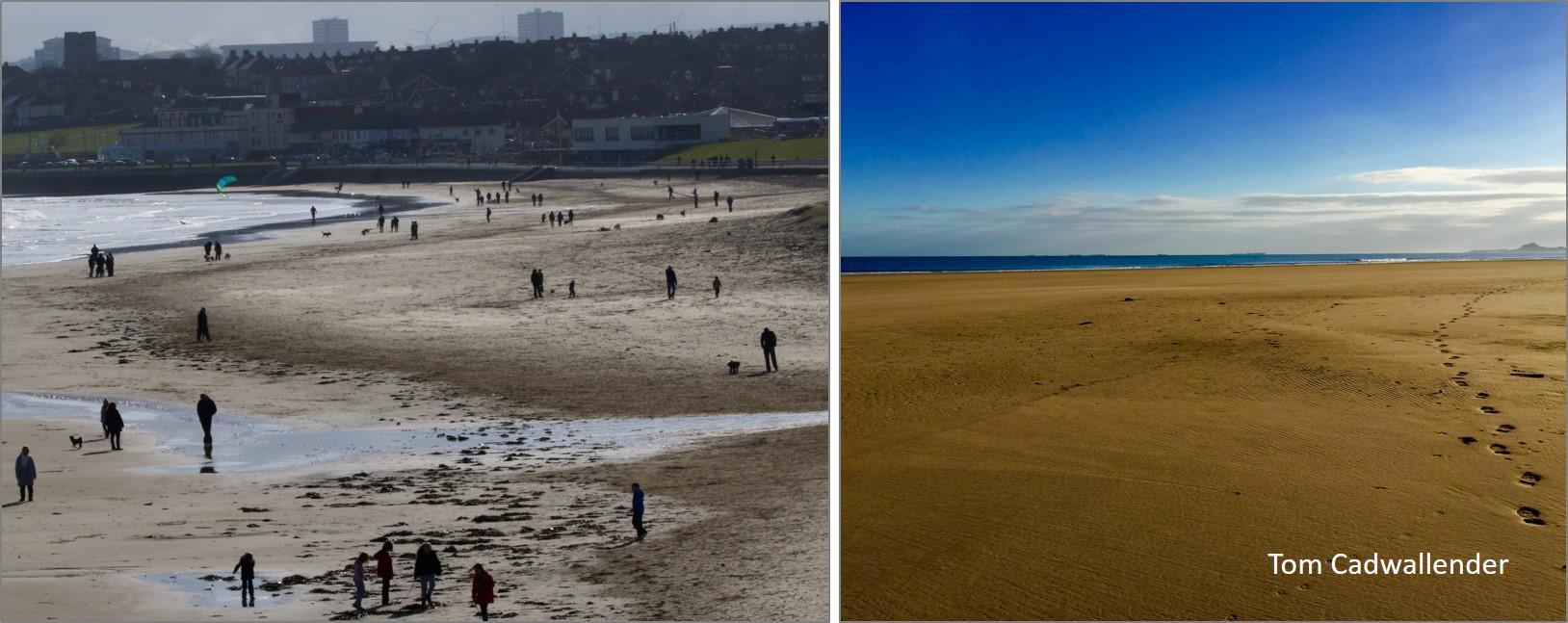 blog sandy beaches