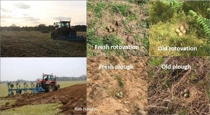 blog tractors